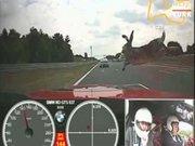Tavşan yarış otomobilini bu hale getirdi!