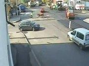 Boğa trafik polisine saldırdı