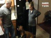 Hamile kadına dokundurmadı!