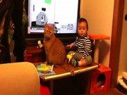 Bu bebek ve kedi efsane olacak!