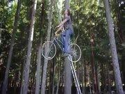 Ağacın tepesine bisiklet ile çıkıyor!