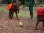 Yaya Toure bebek fillerle maç yaptı!