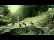 Kayıp Karıncalar Vadisi