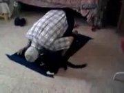 Namaz kılan adamın kediyle imtihanı