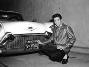 Elvis Presley Müzayedesi