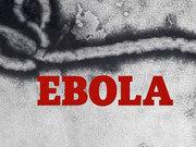 Ebola alarmı harekete geçirdi
