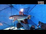 Buz üstünde çadır kurup balık avlamak