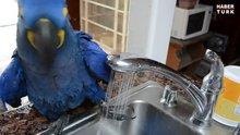 Muslukla duş aldı!
